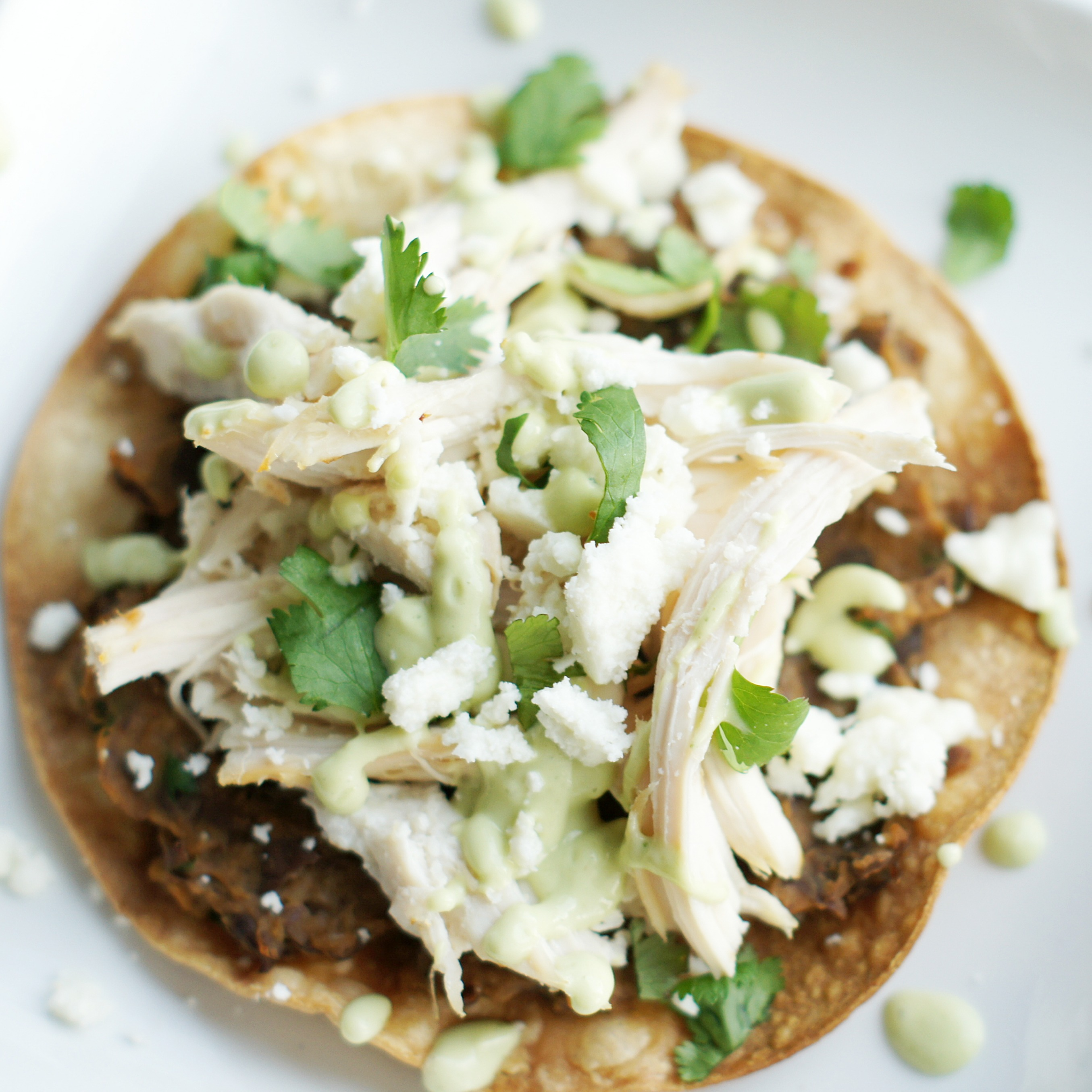chicken and black bean smoked pork tostadas with black bean tostada ...