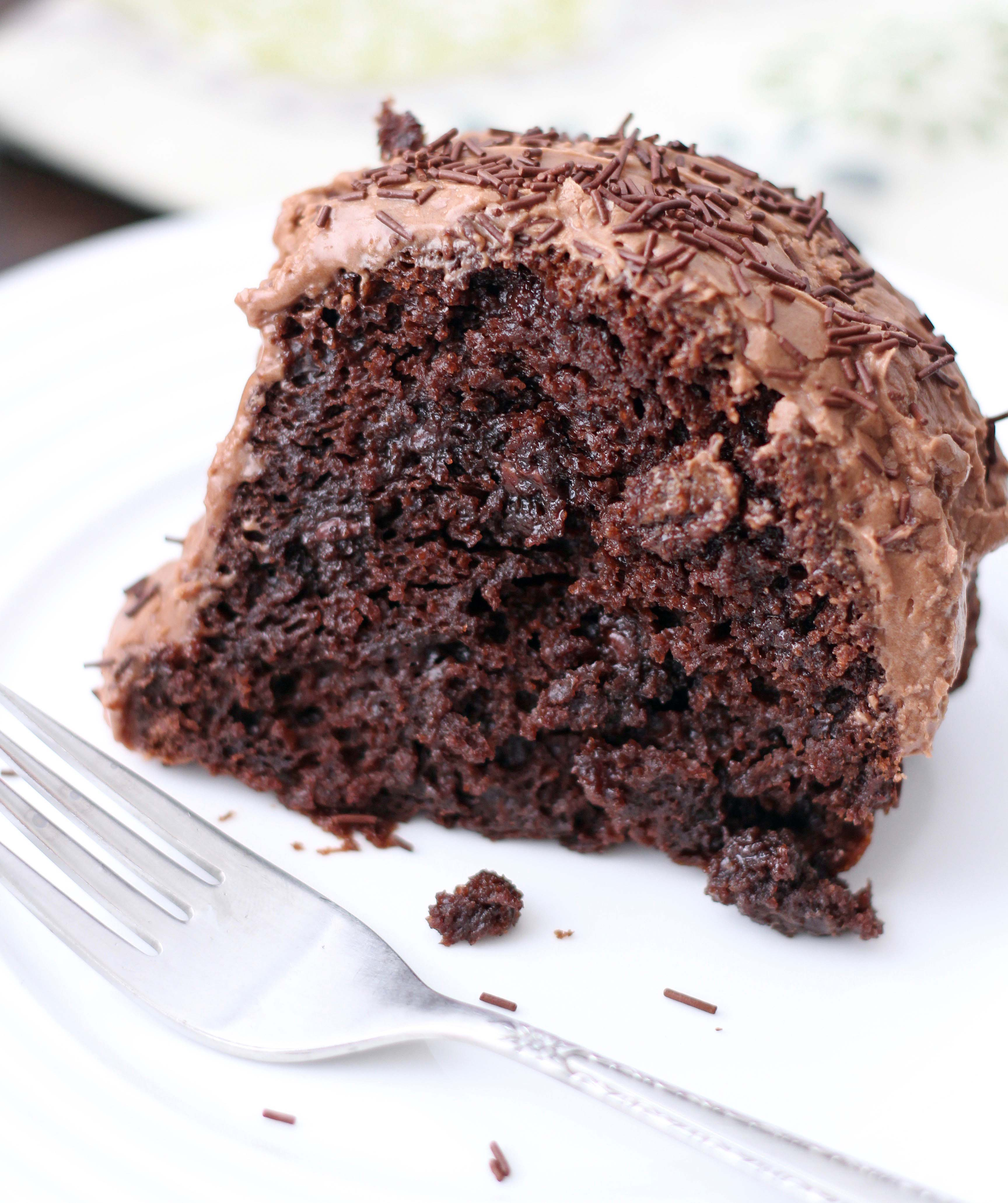 Amazing Chocolate Cake with Sour Cream Chocolate Frosting - 5BoysBaker
